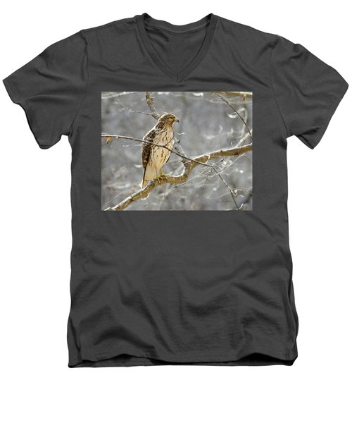 Men's V-Neck T-Shirt featuring the photograph Hawk On Lookout by George Randy Bass