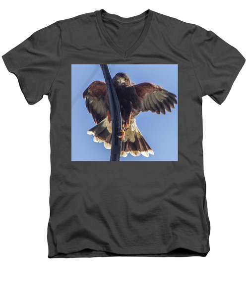 Hawk Watch 6 Men's V-Neck T-Shirt