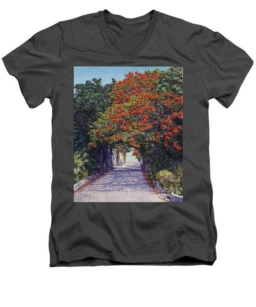 Hawkins Hill Men's V-Neck T-Shirt