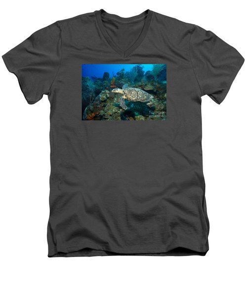 Men's V-Neck T-Shirt featuring the photograph Hawksbill Haunt by Aaron Whittemore