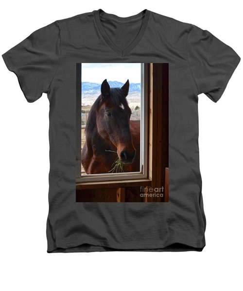 Hay There Men's V-Neck T-Shirt