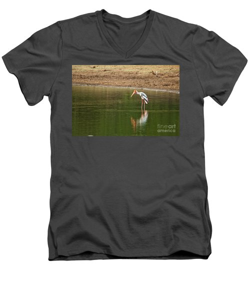 The Painted Stork  Mycteria Leucocephala  Men's V-Neck T-Shirt