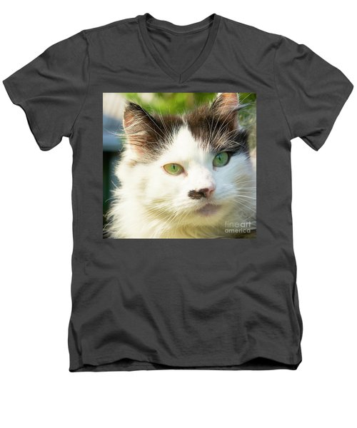 Head Of Cat Men's V-Neck T-Shirt by Irina Afonskaya