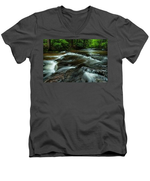 Headwaters Of Williams River  Men's V-Neck T-Shirt