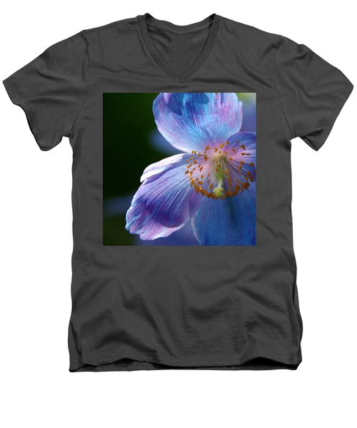 Men's V-Neck T-Shirt featuring the photograph Healing Light by Byron Varvarigos