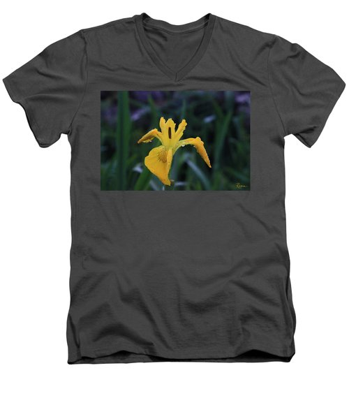 Heart Of Iris Men's V-Neck T-Shirt