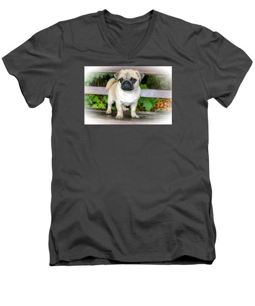 Heathcliff The Pug Men's V-Neck T-Shirt