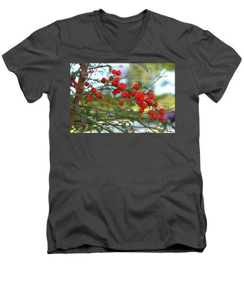 Heavenly Bamboo Men's V-Neck T-Shirt