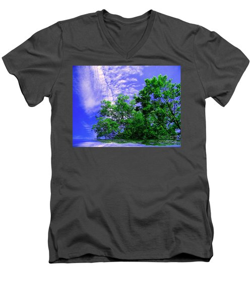 Men's V-Neck T-Shirt featuring the photograph Heavenly by Elfriede Fulda