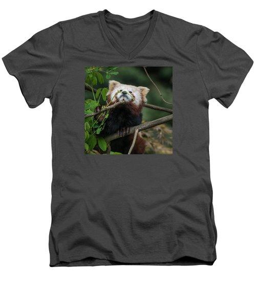 Heavenwards Men's V-Neck T-Shirt