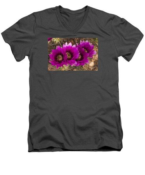 Men's V-Neck T-Shirt featuring the photograph Hedgehog Lineup by Laura Pratt