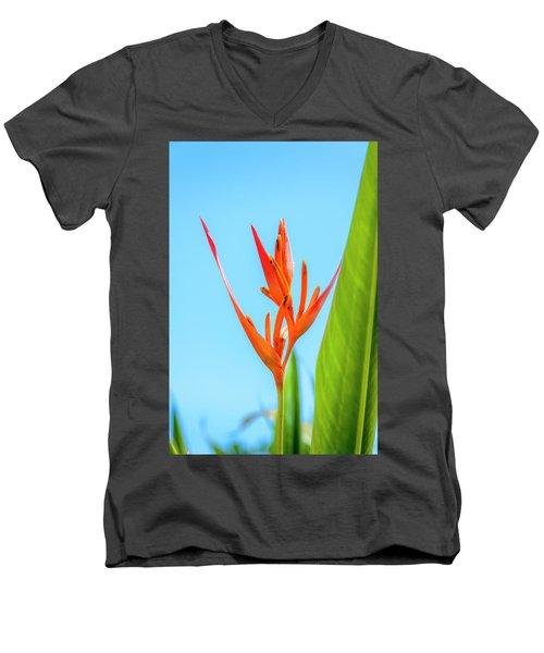 Heliconia Flower Men's V-Neck T-Shirt