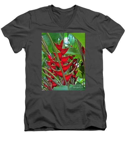 Heliconias Men's V-Neck T-Shirt by Steven Parker