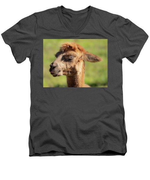 Hello Darling Men's V-Neck T-Shirt