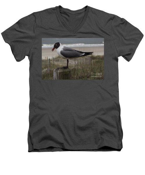 Hello Friend Seagull Men's V-Neck T-Shirt