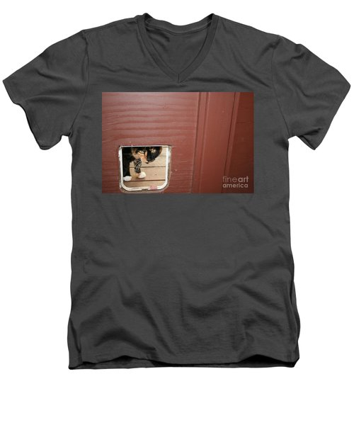 Curly Peeking Men's V-Neck T-Shirt