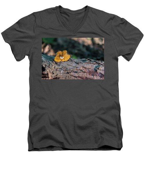 Hen Of The Woods Mushroom Men's V-Neck T-Shirt