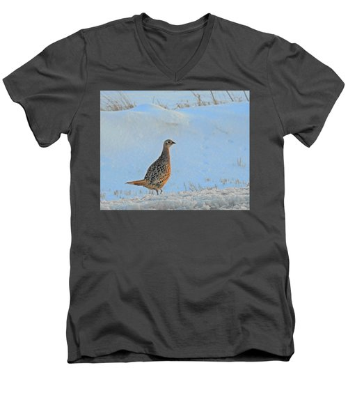 Hen Pheasant Men's V-Neck T-Shirt