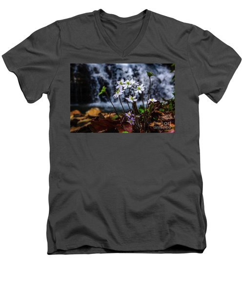 Men's V-Neck T-Shirt featuring the photograph Hepatica And Waterfall by Thomas R Fletcher