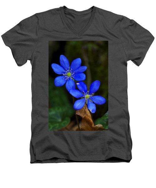 Hepatica Nobilis Men's V-Neck T-Shirt