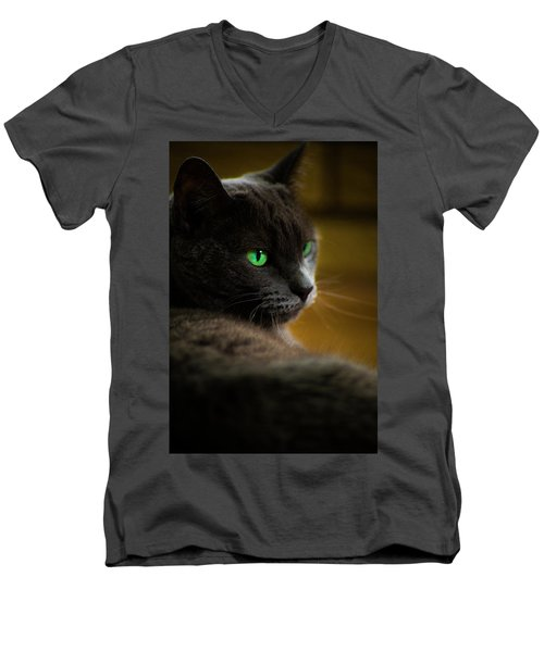 The Eyes Have It Men's V-Neck T-Shirt