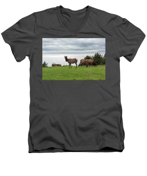 Herd Of Elk At Ecola State Park Men's V-Neck T-Shirt