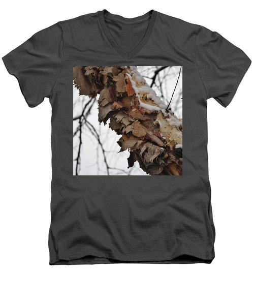 Men's V-Neck T-Shirt featuring the photograph Heritage Birch by Vadim Levin