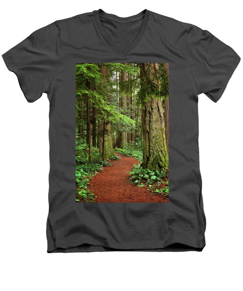 Heritage Forest 2 Men's V-Neck T-Shirt by Randy Hall