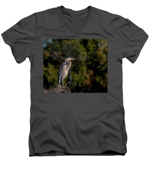 Heron At Sunrise Men's V-Neck T-Shirt by Martina Thompson