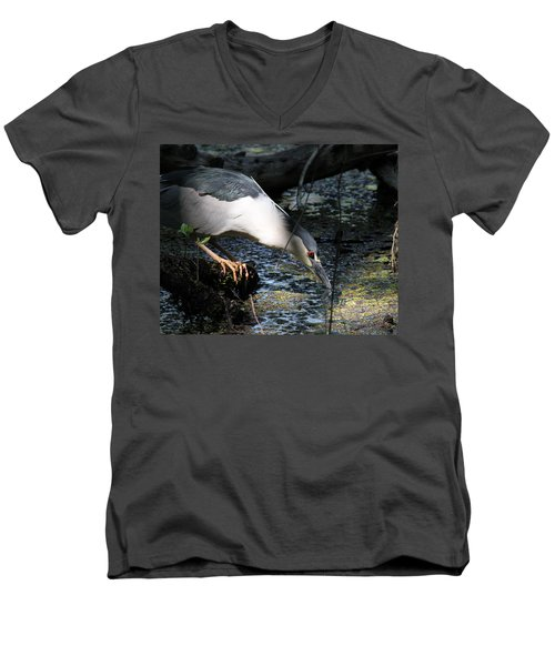 Heron In A Sun Beam Men's V-Neck T-Shirt