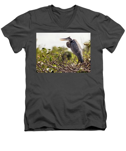 Heron In Nest Men's V-Neck T-Shirt by Jim Gillen