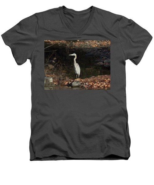 Heron  Men's V-Neck T-Shirt