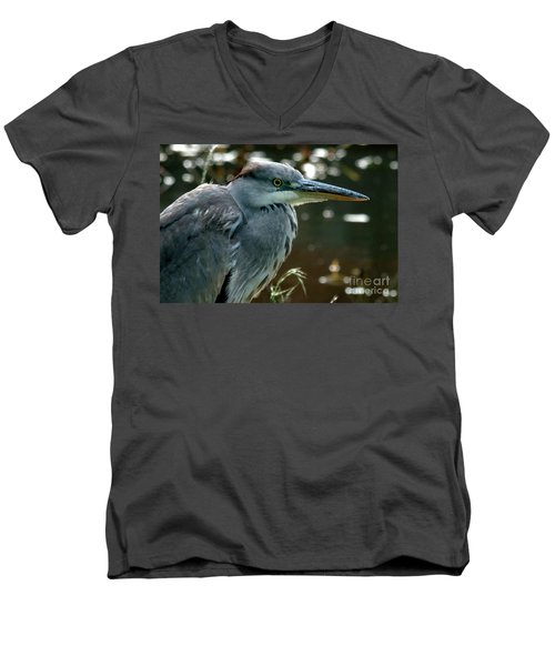 Herons Looking At You Kid Men's V-Neck T-Shirt
