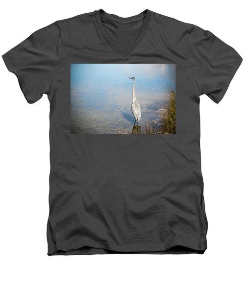 Heron's Watch Men's V-Neck T-Shirt by Gwen Vann-Horn