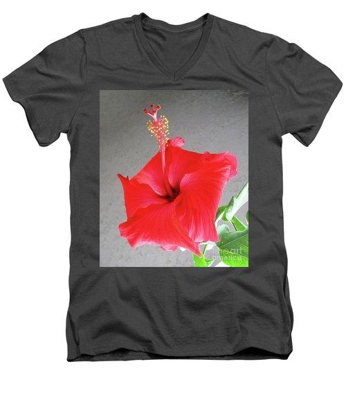 Hibiscus #2 Men's V-Neck T-Shirt