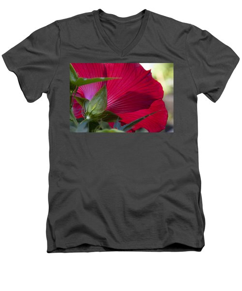 Men's V-Neck T-Shirt featuring the photograph Hibiscus by Charles Harden