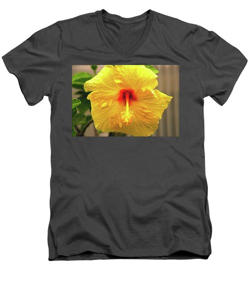 Hibiscus Flower After The Rain Men's V-Neck T-Shirt by Michael Courtney