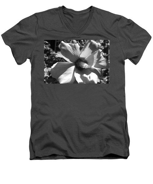 Hibiscus In Bloom Men's V-Neck T-Shirt