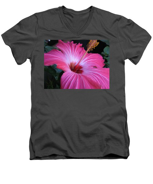 Hibiscus Photograph Men's V-Neck T-Shirt by Barbara Yearty