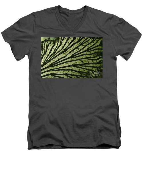 Hibiscus Tiliaceus Variegata Men's V-Neck T-Shirt