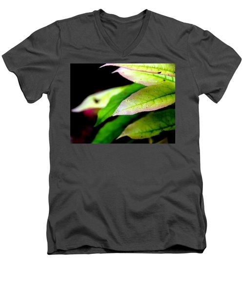 Hickory Leaf Men's V-Neck T-Shirt