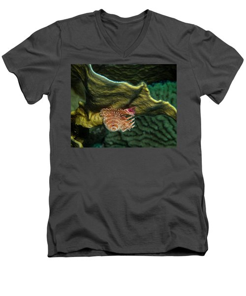 Men's V-Neck T-Shirt featuring the photograph Hidden Christmastree Worm by Jean Noren
