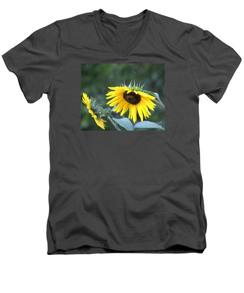 Hidden Depression Men's V-Neck T-Shirt
