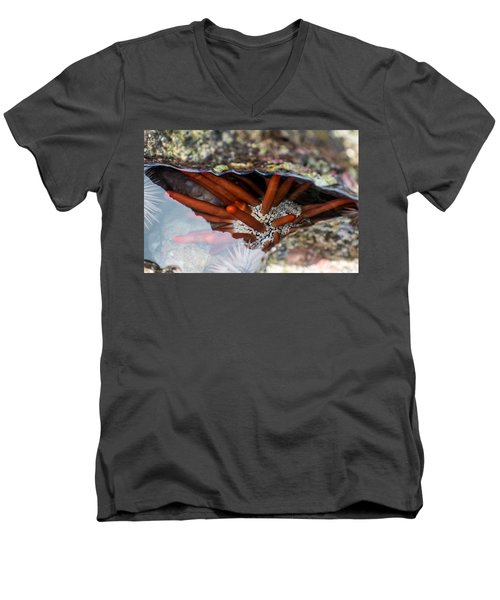 Men's V-Neck T-Shirt featuring the photograph Hidden Treasure by Colleen Coccia