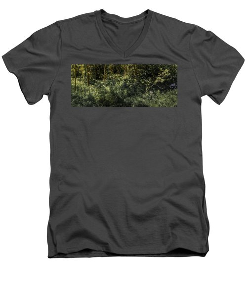 Hidden Wildflowers Men's V-Neck T-Shirt