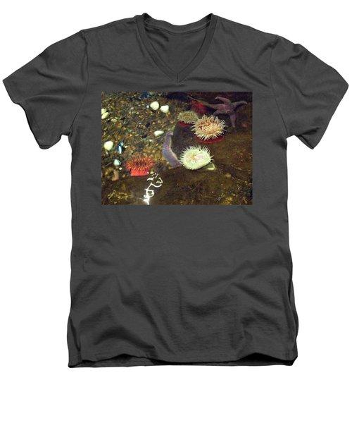 Hidden Writings Men's V-Neck T-Shirt