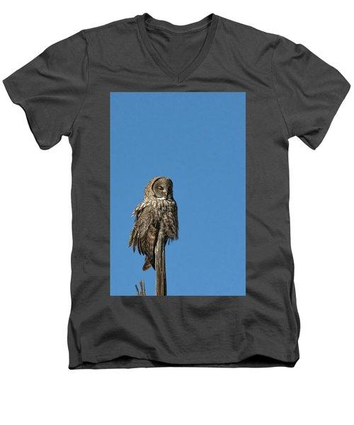 High Lookout Men's V-Neck T-Shirt