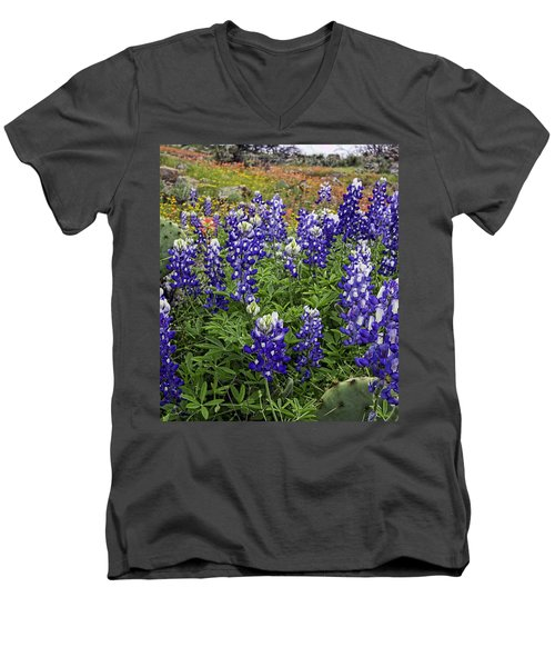 Hill Country Palette Men's V-Neck T-Shirt