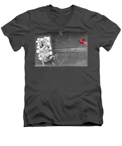 Hints Of Red Men's V-Neck T-Shirt