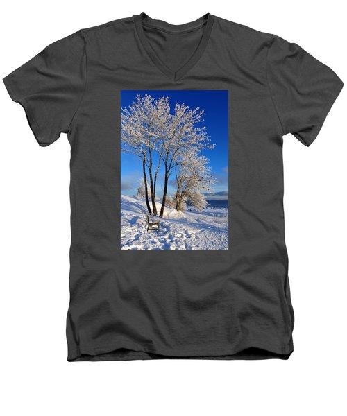 Hoarfrost  Men's V-Neck T-Shirt